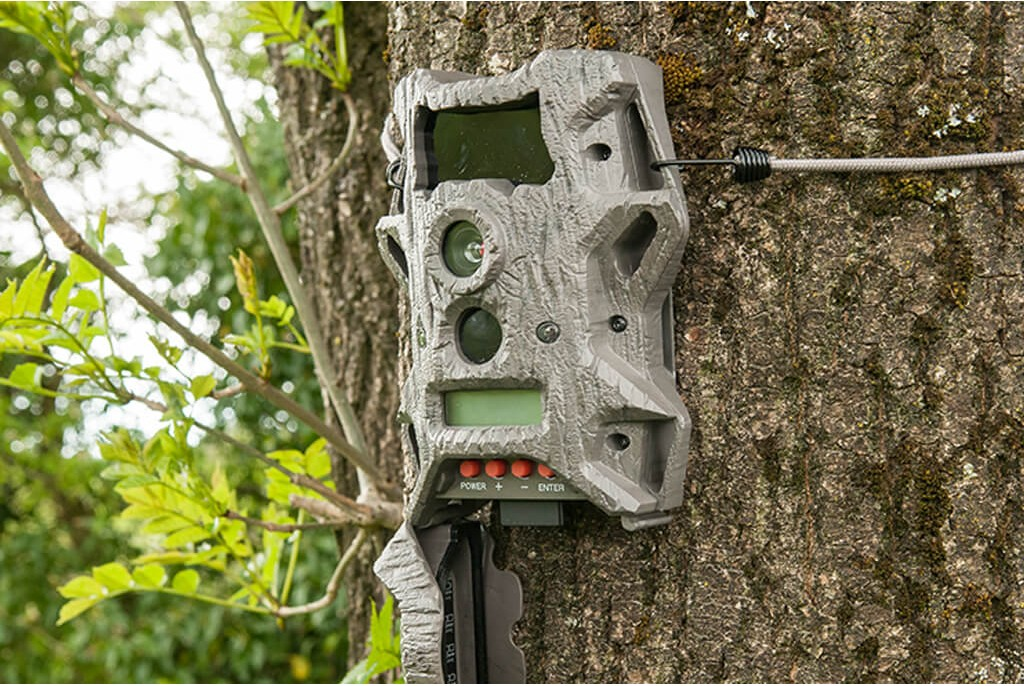 Image of Wildgame Innovations Cloak Pro 10 Lightsout Wildlife Camera