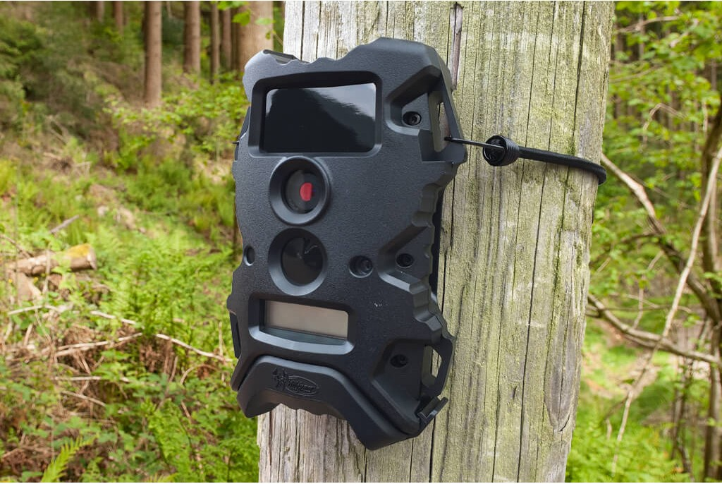 Wildgame Innovations Terra 8 Lightsout Wildlife Camera