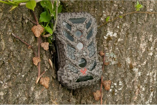 Wildgame Innovations Silent Crush 24 Wildlife Camera