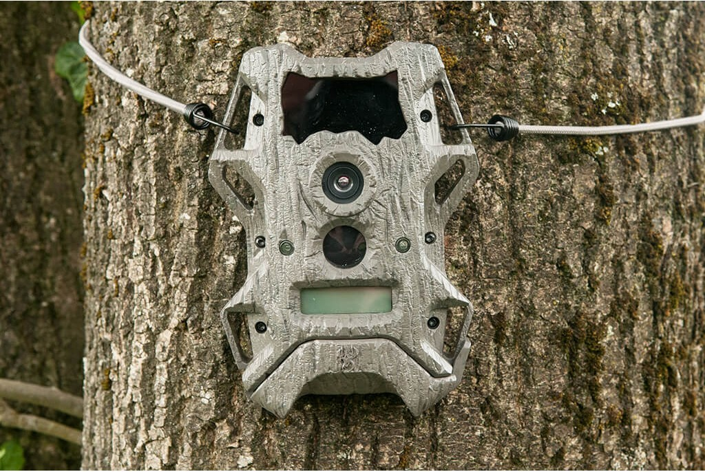 Image of Wildgame Innovations Cloak Pro 12 Lightsout Wildlife Camera