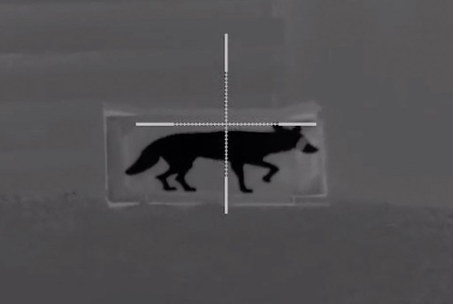 Thermbright Fox/Coyote Passive Thermal Imaging Target