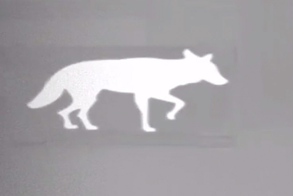 Image of Thermbright Fox/Coyote Passive Thermal Imaging Target