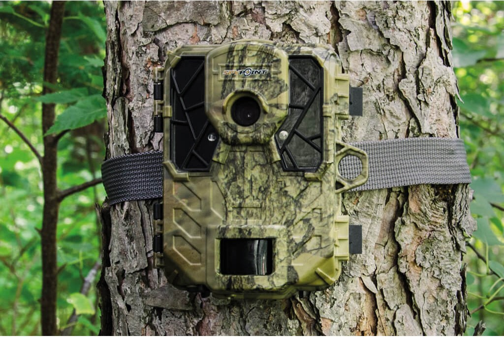 Image of Spypoint Force 11-D Wildlife Camera